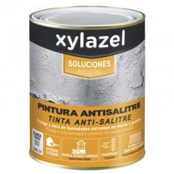 Pintura Antihumedad/Antisalitre Xylazel