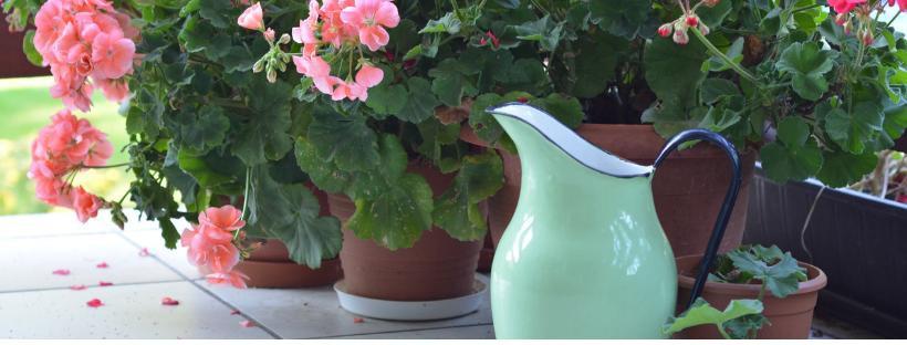 Cinco colores para tu terraza y jardín